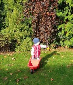 Biedroneczki na jesiennym spacerze