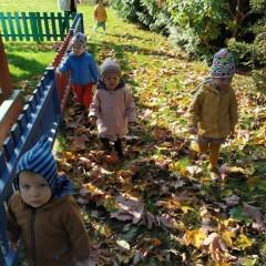 grupa Motylki - jesienny spacer