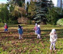 grupa Pszczółki - Jesienią w ogrodzie